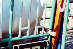 Implementos ganaderos034