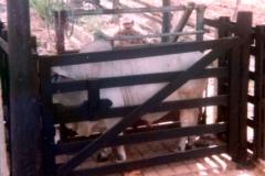 Mesa Porras 24